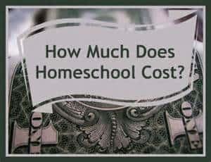 The True Cost of Homeschooling