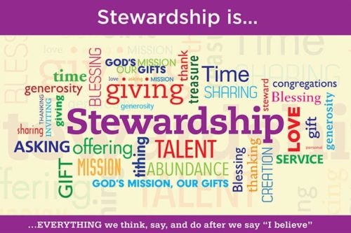Rabbit Trail: Stewardship